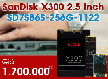 SD7SB6S-256G-1122