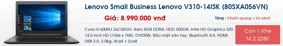 Lenovo Small Business Lenovo V310-14ISK (80SXA056VN)