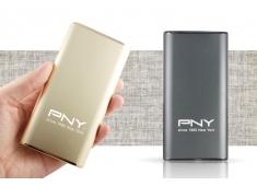 Pin dự phòng PNY Power-T601 (Bạc, vàng)