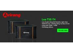 Loa Karaoke loa TSE-T4