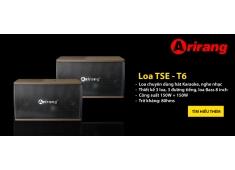 Loa Karaoke loa TSE-T6