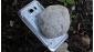Lộ hình ảnh của Galaxy S7 Active