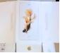 Bộ đôi siêu phẩm iPhone 6s/6s Plus lộ vỏ hộp